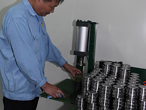 Assembly machine of seal rings